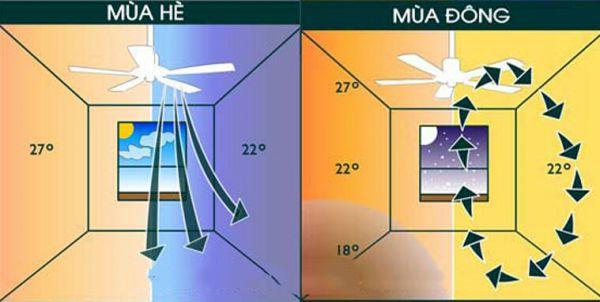 Lựa chọn quạt trần cao cấp đảo chiều cho mùa đông không lạnh