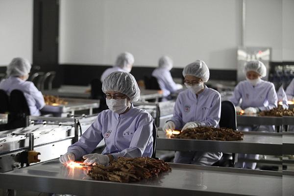 KGC hồng sâm Hàn Quốc - Thương hiệu không có đối thủ cạnh tranh trên thế giới