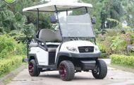 Giải mã sức hút của xe điện sân golf VN Electric Car