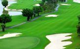 Tại sao xe điện Tùng Lâm được nhiều chủ sân golf lựa chọn?