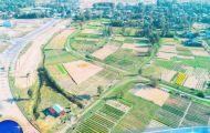 Quảng Nam quyết hủy 185 giấy chứng nhận quyền sử dụng đất ở hai khu đô thị