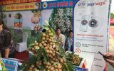 Tỉnh Hưng Yên triển khai ứng dụng giải pháp chống giả hàng nông sản Jeptags