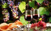 Đẳng cấp và sang trọng với rượu vang Pháp