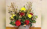 Đón xuân Kỷ Hợi với bình hoa Nghênh Xuân rực rỡ