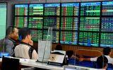 Nhiều nhà đầu tư cá nhân bị xử phạt vi phạm chứng khoán