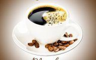 Giá cà phê hôm nay 19/4: Arabica điều chỉnh kỹ thuật 'lấy hơi', robusta có lý do để 'đi xuống'