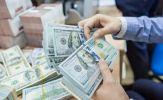 Tỷ giá USD hôm nay 15/5: Đồng USD lao dốc sau một phiên tăng phi mã