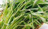 Lợi ích phòng trị bệnh hữu hiệu của rau muống